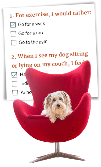 Questions To Match You With The Perfect Dog