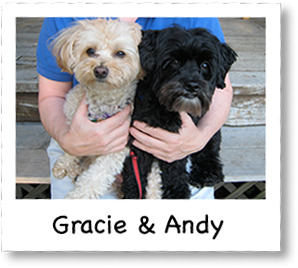 Gracie And Andy