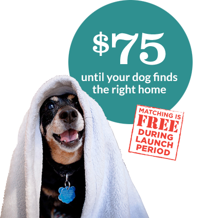 $75 to Rehome Your Dog